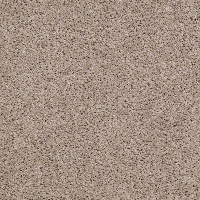 Shaw Floors Shaw Flooring Gallery Gibson Birch Bark 00107_Q259G
