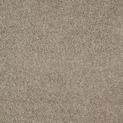 Shaw Floors Shaw Flooring Gallery Gibson Lava 00109_Q259G
