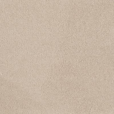 Shaw Floors Shaw Flooring Gallery Truly Modern I 12′ Mushroom 00101_Q263G