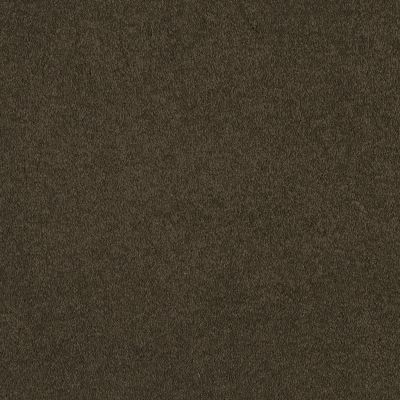 Shaw Floors Shaw Flooring Gallery Truly Modern I 12′ Tropic Vine 00304_Q263G