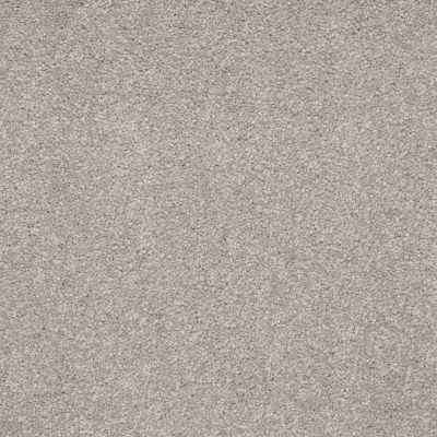 Shaw Floors Shaw Flooring Gallery Truly Modern I 12′ London Fog 00501_Q263G