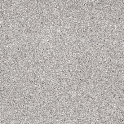 Shaw Floors Shaw Flooring Gallery Truly Modern II 12′ Silver Charm 00500_Q265G