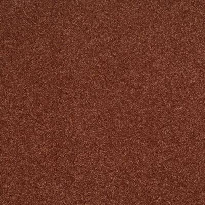 Shaw Floors Shaw Flooring Gallery Truly Modern III 12′ Spanish Tile 00601_Q267G