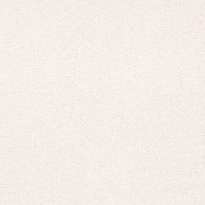 Shaw Floors Shaw Flooring Gallery Truly Modern III 15′ Vanilla 00100_Q268G