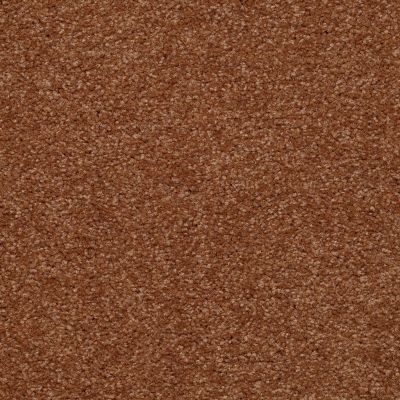 Shaw Floors Shaw Flooring Gallery Invite Possibility II Soft Copper 00600_Q315G