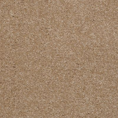 Shaw Floors Shaw Flooring Gallery Invite Possibility III Sea Grass 00700_Q316G