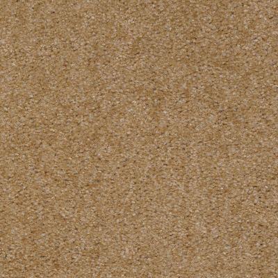 Shaw Floors Zipp Plus Acorn 00170_Q3883