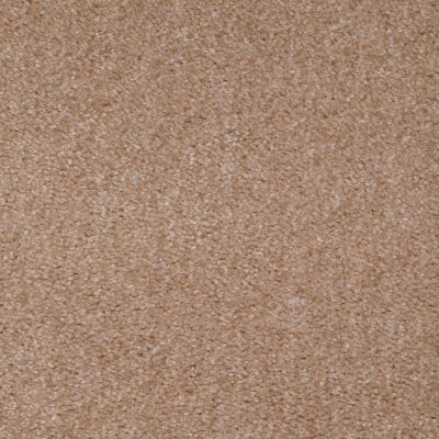 Shaw Floors Zipp Plus Stucco 00751_Q3883