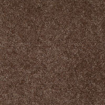 Shaw Floors Zipp Plus Fudge 00754_Q3883