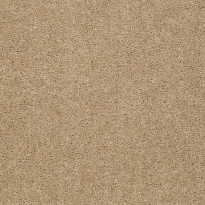Shaw Floors Zipp Plus Stone 00761_Q3883