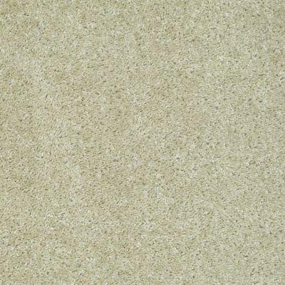 Shaw Floors SFA Hayward Nature's Mist 00103_Q3898