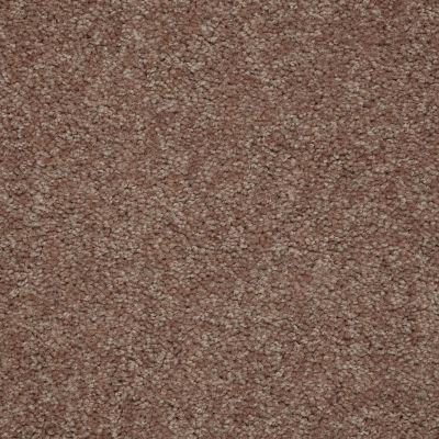Shaw Floors Queen Solitude II 15′ Moccasin 00752_Q3955
