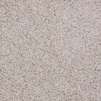 Shaw Floors Flourish Pebble 00102_Q4206