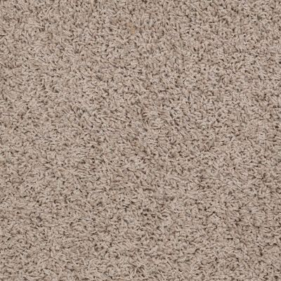 Shaw Floors Flourish Birch Bark 00107_Q4206