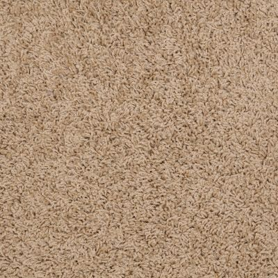 Shaw Floors Flourish French Bread 00200_Q4206