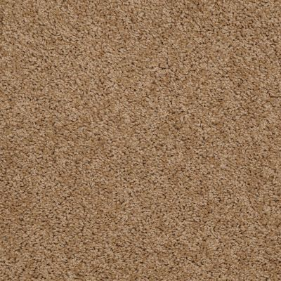 Shaw Floors Queen Thrive Dried Oak 00201_Q4207