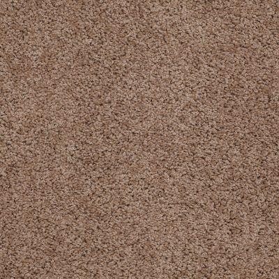 Shaw Floors Queen Thrive Barn Wood 00700_Q4207