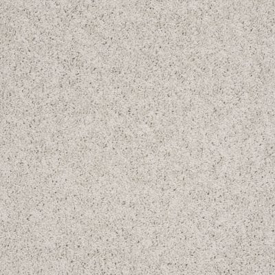 Shaw Floors SFA Garden Lake Crystal Gray 00500_Q4208