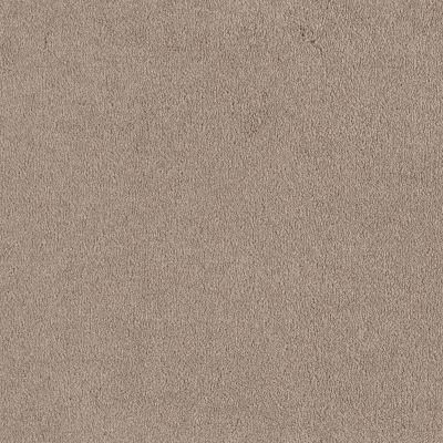 Shaw Floors Sandy Hollow I 12′ Oatmeal 00104_Q4273