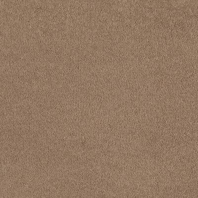 Shaw Floors Sandy Hollow I 12′ Adobe 00108_Q4273