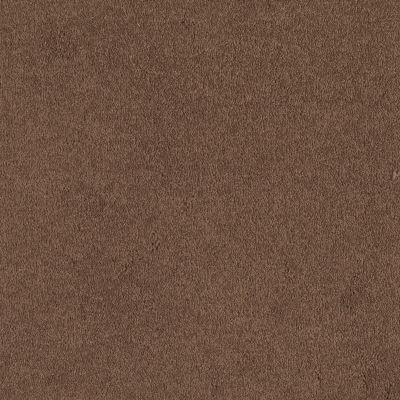 Shaw Floors Sandy Hollow I 12′ Tuscany 00204_Q4273