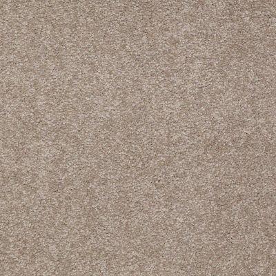 Shaw Floors Sandy Hollow I 12′ Chinchilla 00306_Q4273