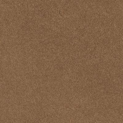 Shaw Floors Sandy Hollow I 12′ Peanut Brittle 00702_Q4273