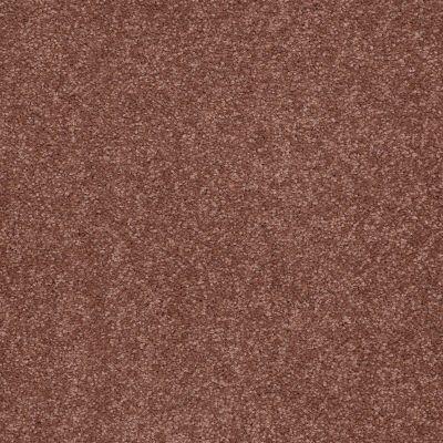 Shaw Floors Sandy Hollow I 12′ English Toffee 00706_Q4273