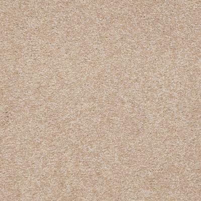 Shaw Floors Queen Sandy Hollow I 15′ Adobe 00108_Q4274