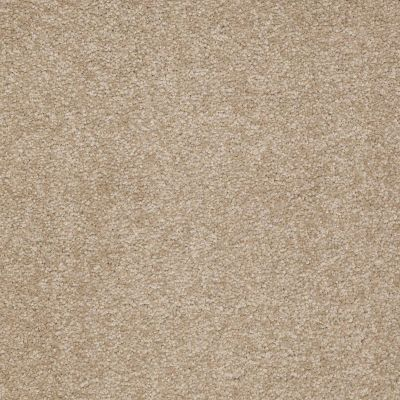 Shaw Floors Queen Sandy Hollow II 12′ Sahara 00205_Q4275