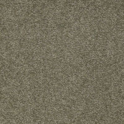 Shaw Floors Queen Sandy Hollow II 12′ Alpine Fern 00305_Q4275