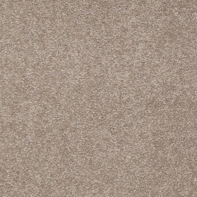 Shaw Floors Queen Sandy Hollow II 12′ Chinchilla 00306_Q4275