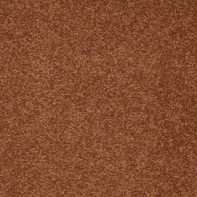 Shaw Floors Queen Sandy Hollow II 12′ Dark Amber 00602_Q4275