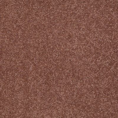 Shaw Floors Queen Sandy Hollow II 12′ English Toffee 00706_Q4275