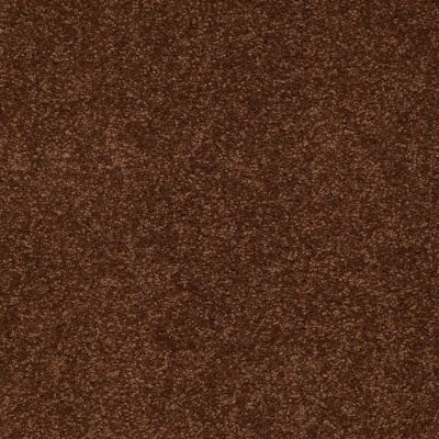 Shaw Floors Sandy Hollow II 15′ Tortoise Shell 00707_Q4276