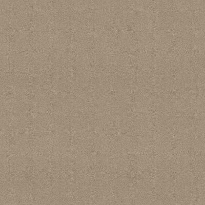 Shaw Floors Sandy Hollow III 12′ Soft Shadow 00105_Q4277