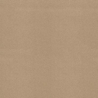 Shaw Floors Sandy Hollow III 12′ Stucco 00110_Q4277