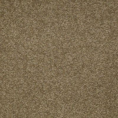 Shaw Floors Sandy Hollow III 12′ Green Tea 00302_Q4277