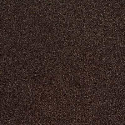 Shaw Floors Sandy Hollow III 12′ Tundra 00708_Q4277