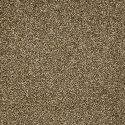 Shaw Floors Sandy Hollow III 15′ Green Tea 00302_Q4278