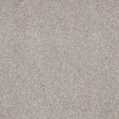 Shaw Floors Sandy Hollow III 15′ London Fog 00501_Q4278