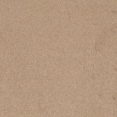 Shaw Floors SFA Timeless Appeal I 12′ Marzipan 00201_Q4310