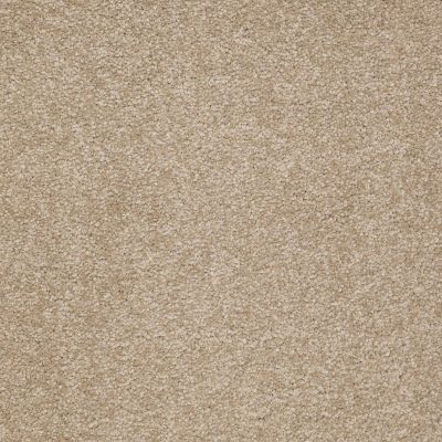 Shaw Floors SFA Timeless Appeal I 12′ Sahara 00205_Q4310