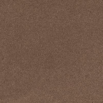 Shaw Floors SFA Timeless Appeal I 12′ Mojave 00301_Q4310