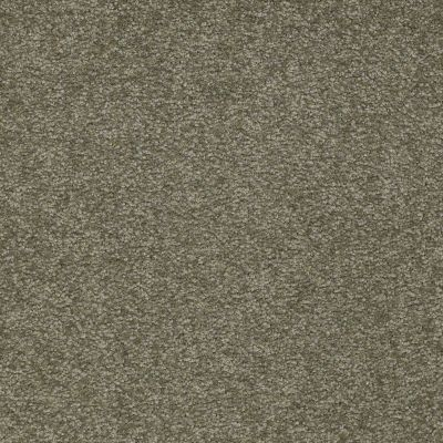 Shaw Floors SFA Timeless Appeal I 12′ Alpine Fern 00305_Q4310