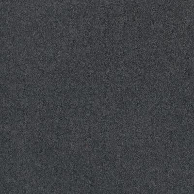 Shaw Floors SFA Timeless Appeal I 12′ Cadet 00401_Q4310