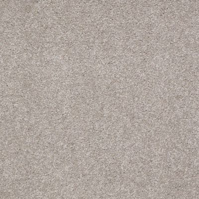 Shaw Floors SFA Timeless Appeal I 12′ London Fog 00501_Q4310
