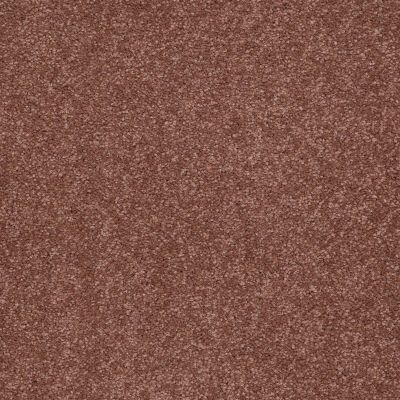 Shaw Floors SFA Timeless Appeal I 12′ English Toffee 00706_Q4310