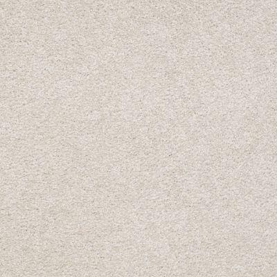 Shaw Floors SFA Timeless Appeal I 15′ Mountain Mist 00103_Q4311