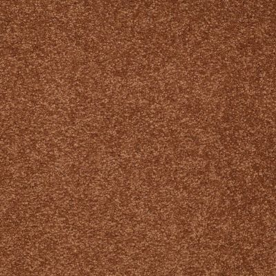 Shaw Floors SFA Timeless Appeal II 12′ Dark Amber 00602_Q4312